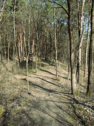 Karoliniškių kraštovaizdžio draustinis